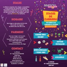 Stages de carnaval 2018 à la Mézon!